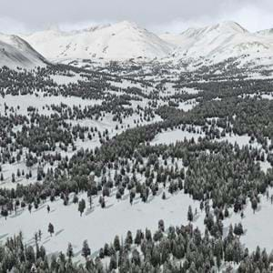 GeoReality Released Global Forests Vol. 2 North America for X-Plane